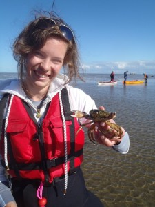 Kijk, een krabbetje. Maar pas op, hij bijt